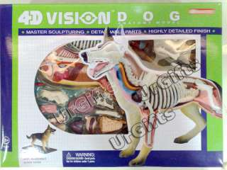 Puzzle Animal Anatomy Series 3D Model Canine Dog 29pcs NEW with a Box