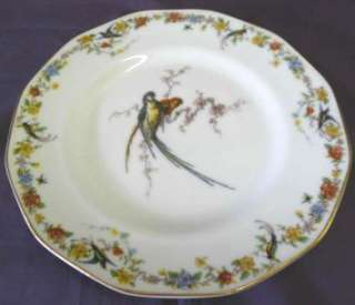 THEODORE HAVILAND FRANCE ARCADIA PATTERN DINNER PLATE |