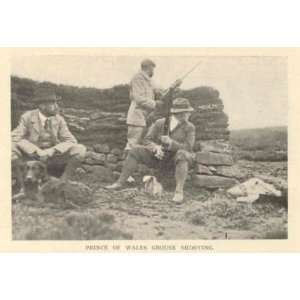 : 1908 English Game Parks Shooting Hunting Game Fowl: Everything Else