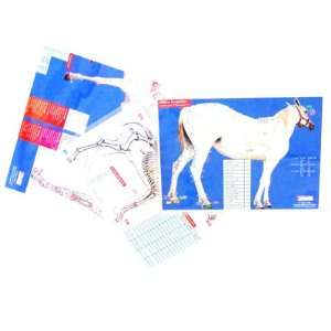 Equine Multiple Channel Charts: Health & Personal Care