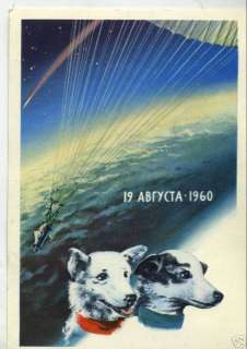 astronaut dogs BELKA STRELKA dog in space DOGS FIRST