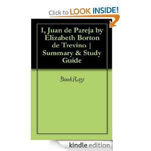 Juan de Pareja by Elizabeth Borton de Trevino  Summary & Study Guide