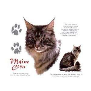 Maine Coon Cat Shirts