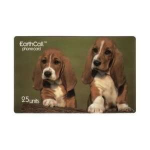 Collectible Phone Card 25u   2 Basset Hound Puppies (Dogs