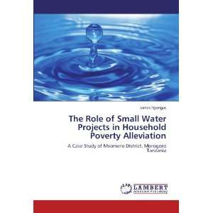 com The Role of Small Water Projects in Household Poverty Alleviation