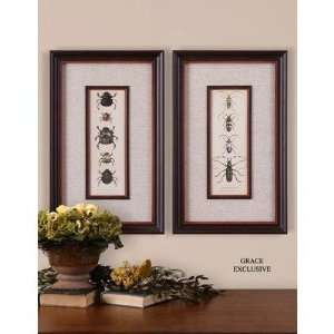 Uttermost 41266 Bug Collection Wall Art (Set of 2)