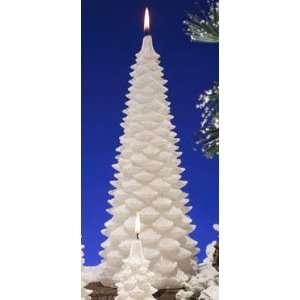 Winter Wonderland Evergreen Fir Scented Christmas Tree Candles 11.5