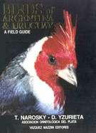 Birds Of Argentina & Uruguay A Field Guide by Dario Yzurieta, Tito
