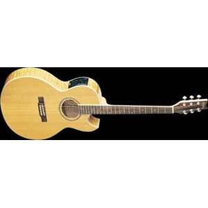 Washburn EA20SDL Acoustic Electric Guitar (Natural