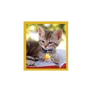 New Magnetic Bookmark Smart Kitty High Quality Modern Design Beautiful