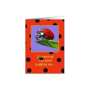 Ladybug Belated Birthday Wishes Paper Greeting Cards Card