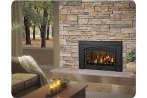 30N Napoleon Fireplace Insert Direct Vent Natural Gas Insert