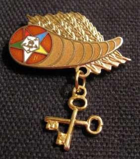 Beautiful Masonic Eastern Star TREASURER Cornucopia Pin